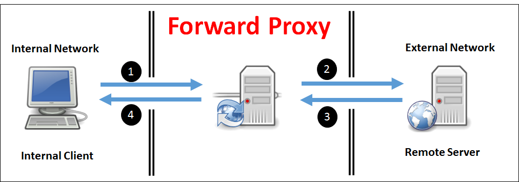 003 what is forward proxy 01